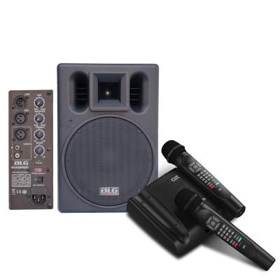 Комплект. Караоке AST-Home + Активная акустическая система BLG RXA08P200